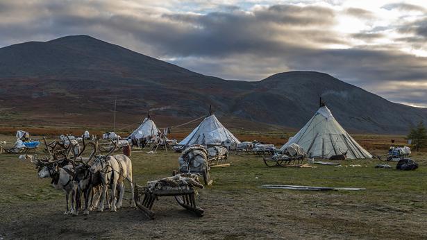 L'automne en Oural, visite et vie au milieu d'une famille Komis éleveurs de rennes - Alexandra, Tamara, Yvan et Dimitri - nature et paysages colorés.